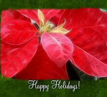 Mottled Red Poinsettia 2 Happy Holidays P1F1 by Christopher Johnson