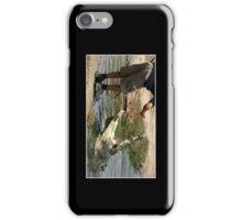 Huge Crocodile Cellphone Case 3 iPhone Case/Skin