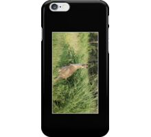 Kangaroo Cellphone Case 11 iPhone Case/Skin