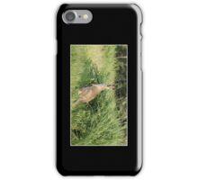 Kangaroo Cellphone Case 11 iPhone Case/Skin