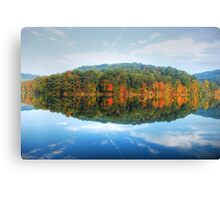 The World Reflected Canvas Print