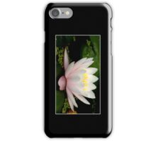 Pink Water Lily Cellphone Case 15 iPhone Case/Skin