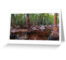 Florence Falls Panorama Greeting Card