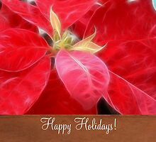 Mottled Red Poinsettia 2 Happy Holidays S1F1 by Christopher Johnson