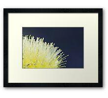Tactile Framed Print