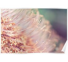 The World of Stamens Poster