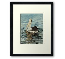 Gliding on Silver Framed Print