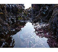 World of Tides  Photographic Print