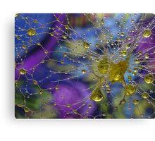 Water Droplets - H20 Super Macro Canvas Print