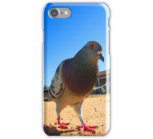 Pigeon Stroll iPhone Case/Skin