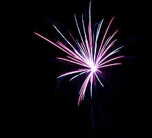 Firework Study I by Craig Higson-Smith