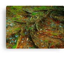 At the roots Canvas Print