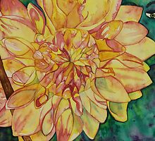 In the Dahlia patch by Catherine Mackintosh