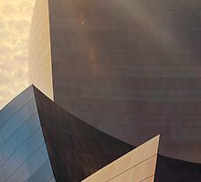 Walt Disney Concert Hall by DDMITR