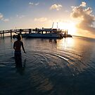 Sun soaked Swimmer - Sunset - Heron Island by Anthony Wilson
