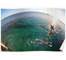 swimming on heron Island - Australia Poster