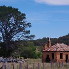 Limestone Creek - Wandsworth NSW. by Liz Worth