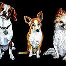 Man's Best Friends by © Linda Callaghan