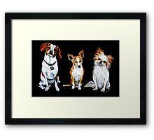 Man's Best Friends Framed Print