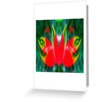 red & green in symmetry  Greeting Card