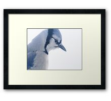 Winter Blues . . . . .  Framed Print