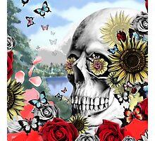 Nature skull landscape Photographic Print