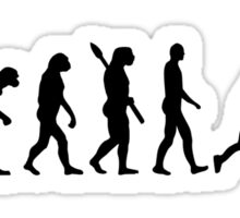Evolution Field hockey Sticker