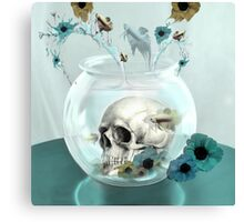 Looking glass skull in fish bowl  Canvas Print