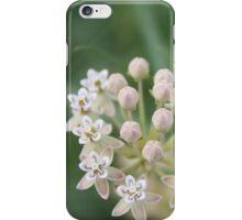 Whorled Milkweed iPhone Case/Skin