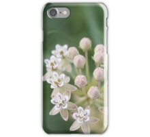 Whorled Milkweed iPhone Case/Skin