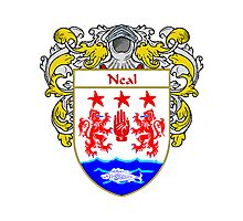 Neal Coat of Arms/Family Crest Photographic Print