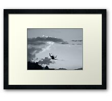 ©HCS The Blur Spider IA Monochromatic Framed Print