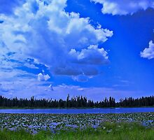 Moose Lake Wyoming by Brenton Cooper
