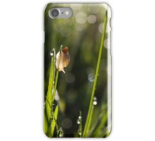 Snail Sparkle iPhone Case/Skin