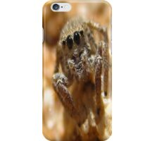 Staring Contest Brown Jumping Spider iPhone Case/Skin
