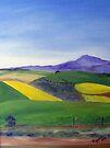 Canola fields by Elizabeth Kendall