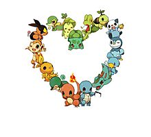 All starters!!!  Pokemon  Photographic Print