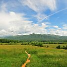 cold colors in the smokies by dc witmer