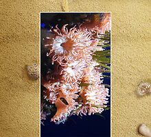 Pink Sea Anenome Cellphone Case 33b by Gotcha29
