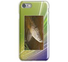 Crocodile Cellphone Case 42b iPhone Case/Skin