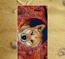 Fraser Island Dingo Cellphone Case 51b by Gotcha29