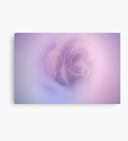Season Of Difference .... Canvas Print