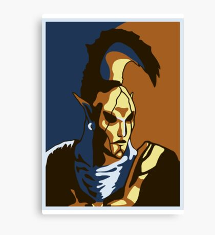 Ordinator Canvas Print