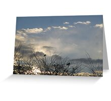 Wintry Sunrise Greeting Card