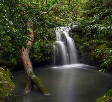 Sydney Waterfalls - Berowra Creek III by vilaro Images