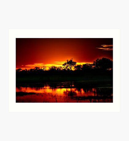 A Botswana sunset Art Print