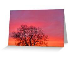 Hot Pink Sunrise Greeting Card