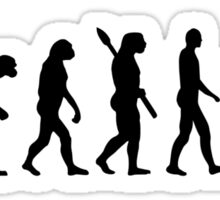 Evolution Snowboard Sticker