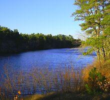 Glistening Pond by CapeCodGiftShop