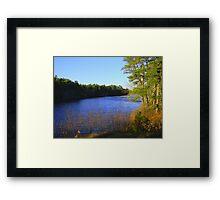 Glistening Pond Framed Print